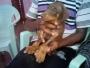 K.C.I Certified Doberman puppy for sale in Chennai